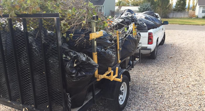 Fall Yard and Garden Clean Up