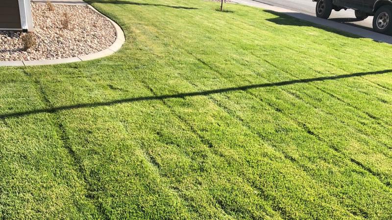 Weekly Lawn Mowing Services In St. George, Utah.